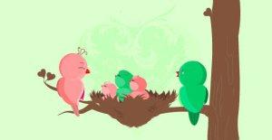 baby-bird[1]