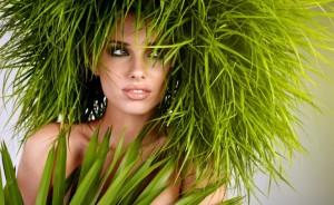 photo-dossier-cosmetique-bio-663x407