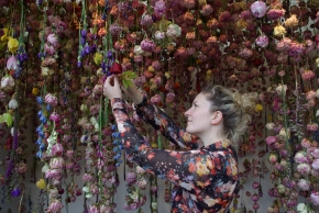 RHS Chelsea Flower Show 2013, an interactive installation, a walkway through drying flowers